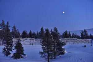 Winter landscape in Pallas Yllästunturi National Park