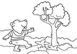 colouring picture, bear and tree