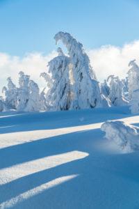 Winterlandschaft beim Brocken im Nationalpark Harz, Sachsen Anhalt, Deutschland