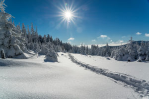 Snowshoe hike in the Harz National Park, Saxony Anhalt, Germany