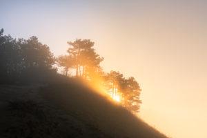 Sunrise over the Jenzig at morning fog