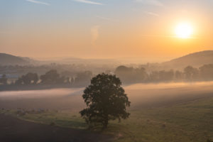 Sunrise with morning mist in Thuringia.