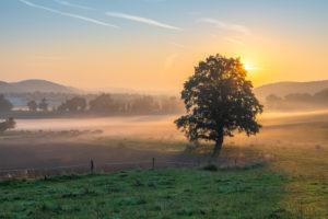 Sonnenaufgang mit Morgennebel in Thüringen.