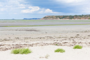 The bay of Saint Brieuc with green algae in summer. National nature reserve. Brittany, France