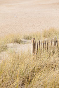 Wooden fence in a dune on the beach at Cap Frehel in Brittany, France.