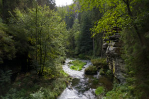 Hrensko gorge in the Czech Republic