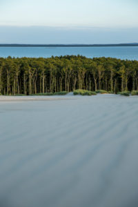 Hiking dune, Leba, Poland
