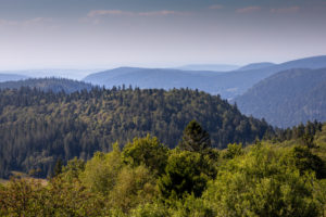 View, mountains, low mountain ranges, freedom, Europe, France, Vosges, Gazon du Faing, national park, wilderness