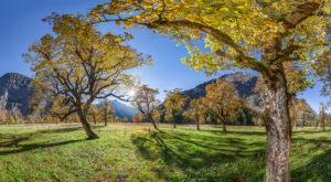 Ahornboden in autumn
