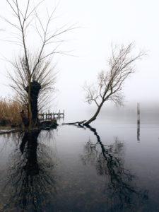 Seeufer im herbstlichen Nebel