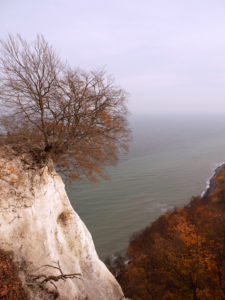 Chalk cliffs on Rügen in golden autumn