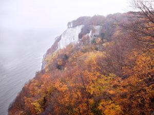 Kreidefelsen auf Rügen im goldenen Herbst