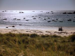 Blick über die Dünen auf einen Strand an der Nordküste der Bretagne im sommerlichen Gegenlicht