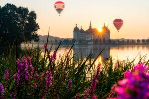 Schloss Moritzburg, See, Spiegelung, Heißluftballons, Blumen