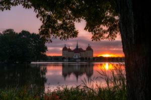 Schloss Moritzburg, See, Spiegelung, Sonnenaufgang