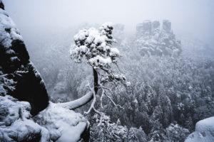 Sächsische Schweiz, Winterlandschaft, Nationalpark, Bastei
