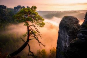 Sächsische Schweiz, Bastei, Sonnenaufgang, Nationalpark, Felsenburg