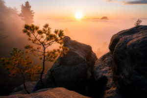 Sonnenaufgang, Sächsische Schweiz, Lilienstein, Nebel, Sachsen, Deutschland, Nationalpark