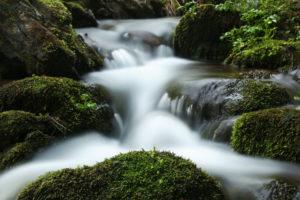 wonderful mountain stream not far from Haslach an der Mühl in the Upper Austrian Mühlviertel