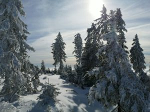 Winter day in the Hochficht ski area in the Bohemian Forest