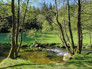 steinerne Mühl im oberösterreichischen Haslach an der Mühl im Mühlviertel im Frühling