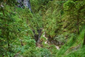 Stream, Almbach gorge, summer, Berchtesgadener Land, Bavaria, Germany