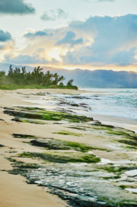 Sunset on the beach on Oahu, North Coast, Oahu Island, Oahu, Hawaii, Aloha State, USA