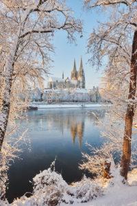 Regensburg Cathedral, view from Jahninsel, Marc-Aurel-Ufer, winter, Regensburg, Bayern, Germany, Europa