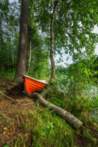 Boat in the forest, Hogland Island, Finland