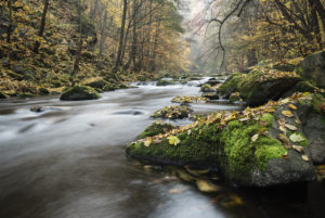 Bode Gorge in autumn, Harz National Park