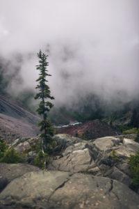 Nebel in den Bergen, British Columbia, Kanada