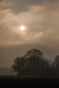 Sonne hinter Wolken über einem Waldstück.