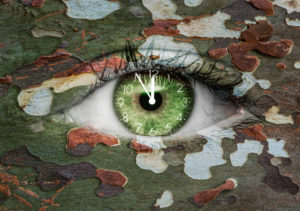 Green eye with clock-face and camoflage pattern