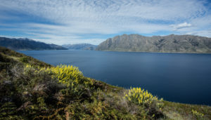 New Zealand, Commonwealth, Queenstown, Lake Wakatipu,