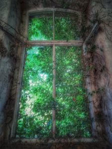 Lost Place, alter maroder Saal, Fenster