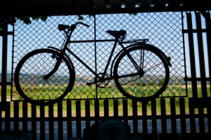 old bicycle hanging on grid wall in front of green field