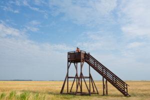 Aussichtsturm aus Holz auf einem Feld