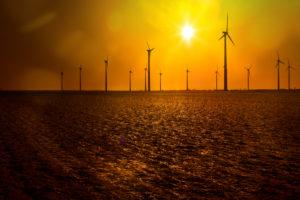 Windräder im gelben Gegenlicht der Sonne auf einem Acker