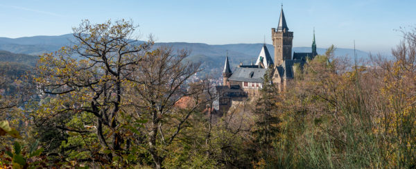 Germany, Saxony-Anhalt, Wernigerode, view of the castle Wernigerode, colorful leaves, resin.