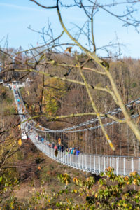 Germany, Saxony-Anhalt, Upper Harz, suspension bridge TitanRT in autumn, Rappbodetalsperre, resin.