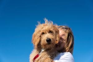 Mädchen mit Hund (Mini Goldendoodle)