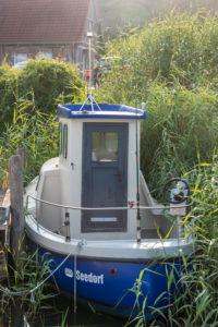 Deutschland, Mecklenburg-Vorpommern, Seedorf, ein altes Fischerboot ankert versteckt im Schilf, Ostsee, Insel Rügen
