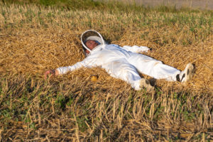 Beekeeper lies in the straw, break, symbol image