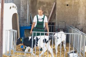 Landwirt, Bauer, steht in einer Kälberbox