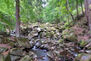 Germany, Saxony-Anhalt, Ilsenburg, Lower Ilse Falls, Harz National Park, Ilsetal