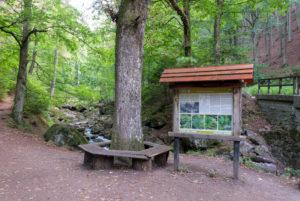 Germany, Saxony-Anhalt, Ilsenburg, Lower Ilse Falls, Harz National Park, Ilsetal, Heinrich-Heine hiking trail