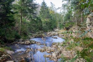 Germany, Saxony-Anhalt, Ilsenburg, Harz National Park, Ilsetal, Ilse River at the Upper Ilse Falls