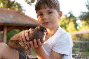 Boy with nasturtium