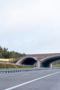 Germany, Saxony-Anhalt, Colbitz, Wildtierbrücke, Autobahn 14, new construction of the A14 north extension, road construction