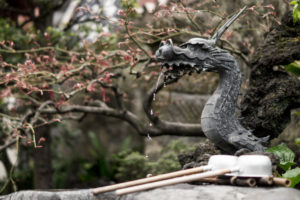 A small fountain in the form of a dragon in a Japanese garden